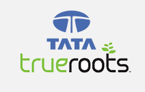 Tata True Roots case study  - Mediareach Advertising Agency: London Advertising Agency